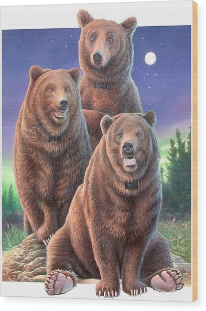 Grizzly Bears In Starry Night Wood Print