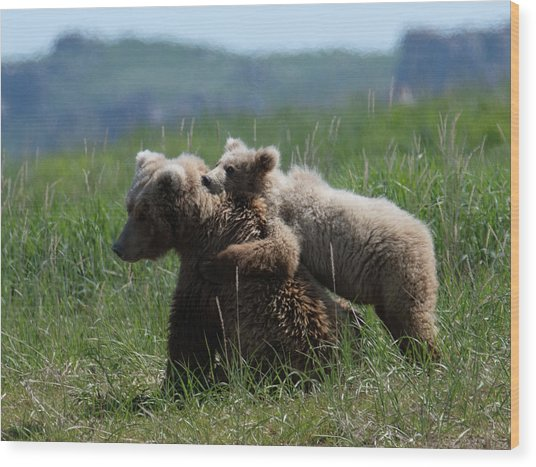 Grizzly  Mother And A Cub In Katmai National Park Wood Print