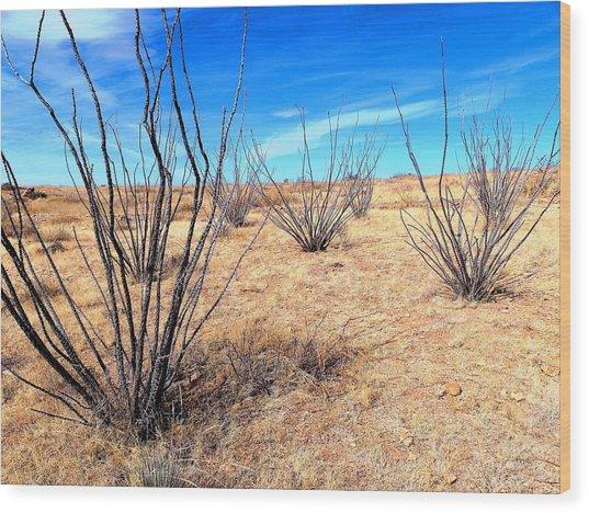 Ground Level - New Mexico Wood Print