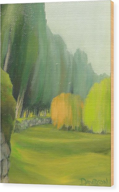 Grounds At The Villa Campestri Tuscany Wood Print