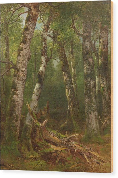 Group Of Trees Wood Print