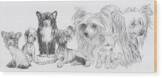 The Chinese Crested And Powderpuff Wood Print