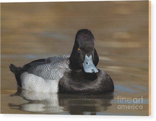 Grumpy Duck Wood Print