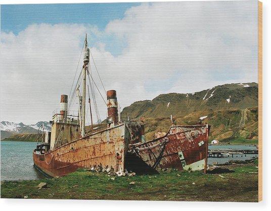 Grytviken Ghosts Wood Print