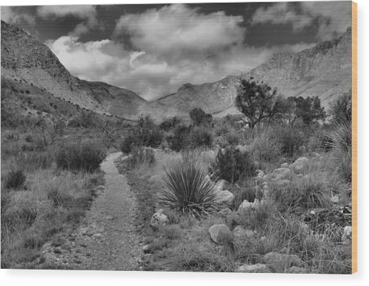 Guadalupe Mountains Morning Wood Print