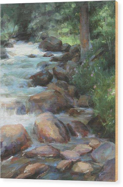 Guanella Pass Stream Wood Print
