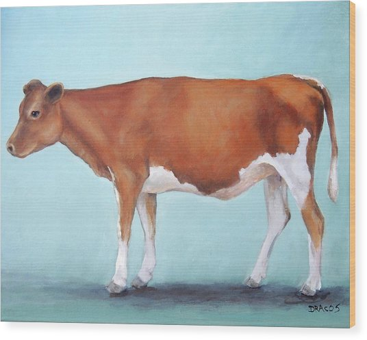 Guernsey Cow Standing Light Teal Background Wood Print