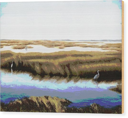 Gulf Coast Florida Marshes I Wood Print