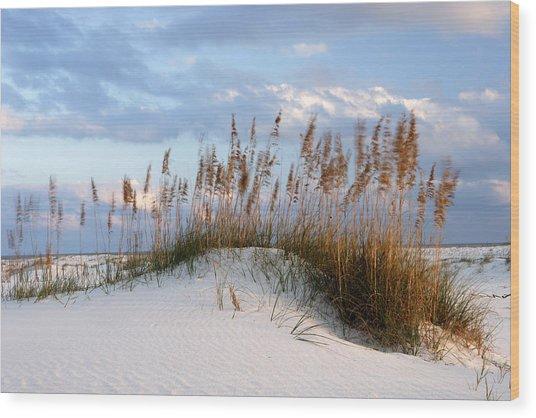 Gulf Dunes Wood Print by Eric Foltz