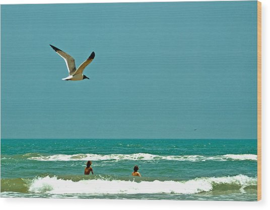 Gulf Of Mexico From Padre Island Wood Print by Jorge Gaete