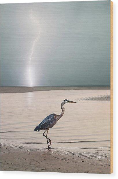 Gulf Port Storm Wood Print