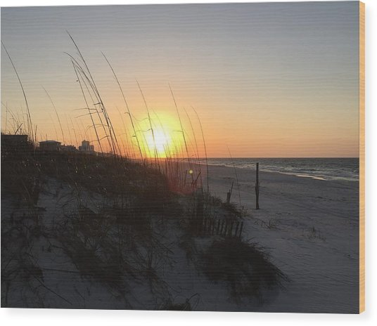 Gulf Shores Sunrise  Wood Print