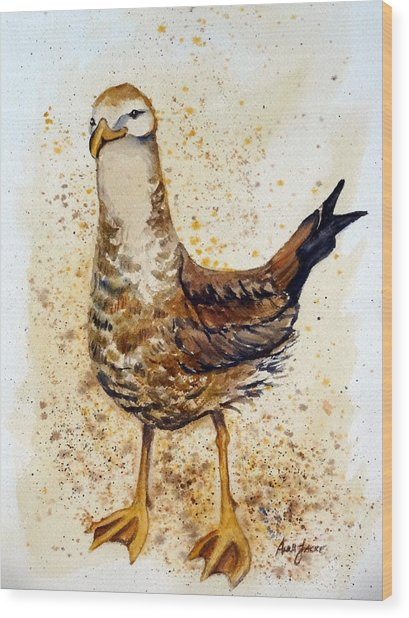 Gull-able Wood Print