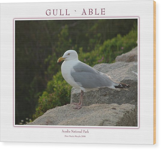 Gull Able Wood Print by Peter Muzyka