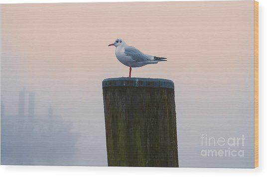 Gull And Fog Wood Print