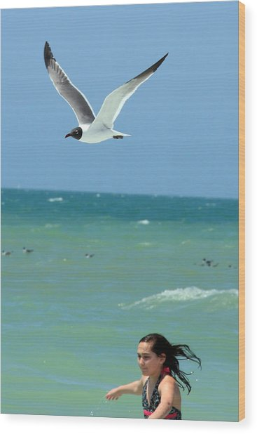 Gull And Girl Wood Print