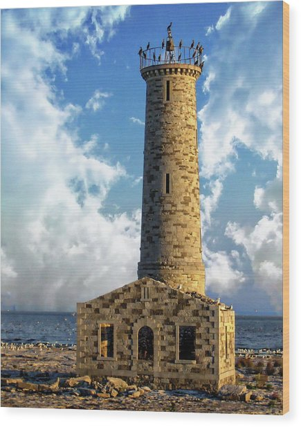 Gull Island Lighthouse Wood Print