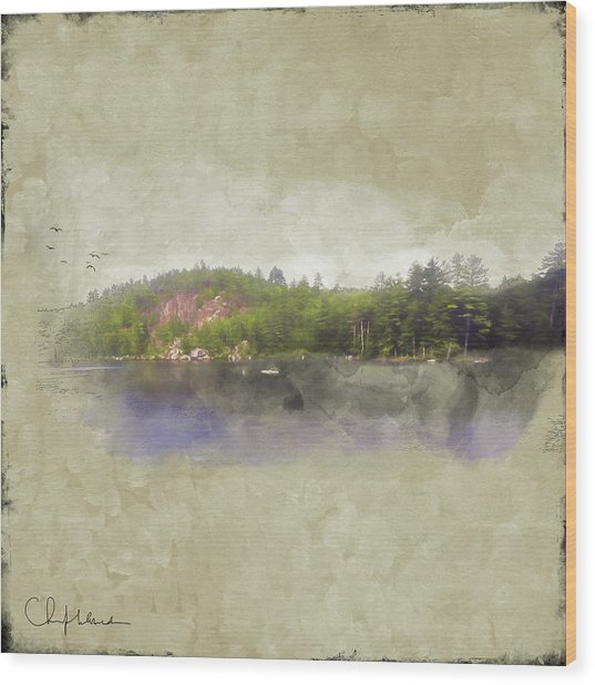 Gull Pond Wood Print