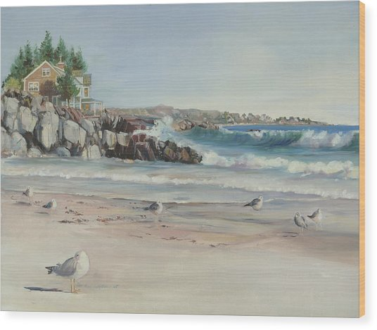 Gulls At Rest Wood Print