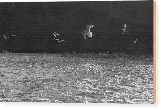 Gulls On The River Wood Print