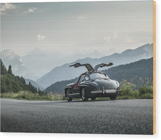 Gullwing In The Mountains Wood Print