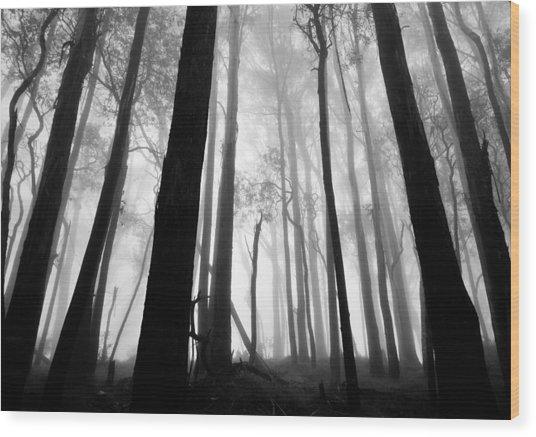 Bundaleer Wood Print