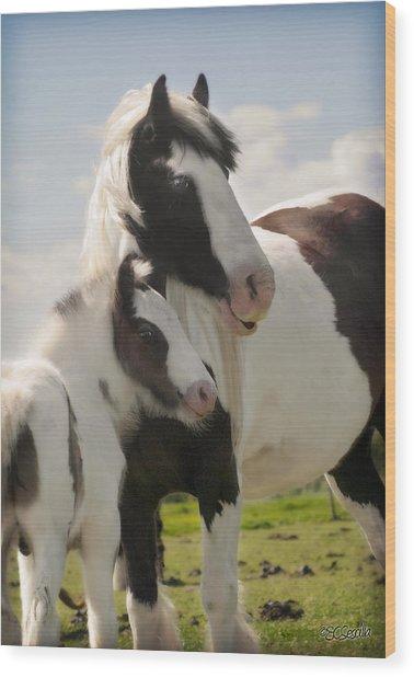 Gypsy Mare And Foal Wood Print by Elizabeth Vieira
