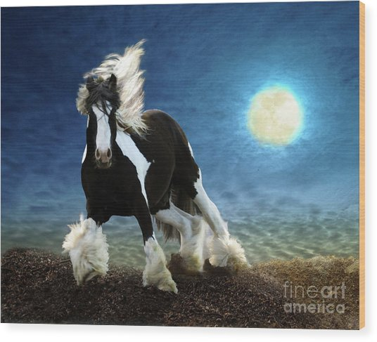 Gypsy Moon Wood Print
