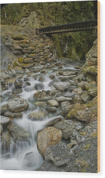 Haast Waterfall Wood Print by Andrea Cadwallader