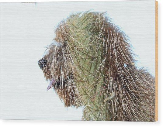 Hairy Doodle Wood Print