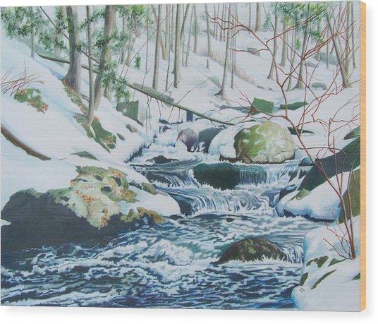 Hamburg Mountain Stream Wood Print