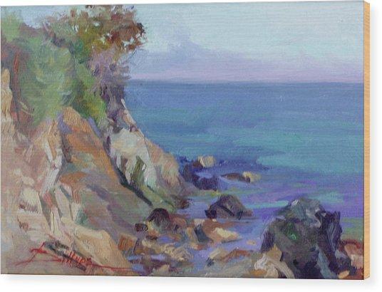 Hamilton Cove Catalina Island Wood Print
