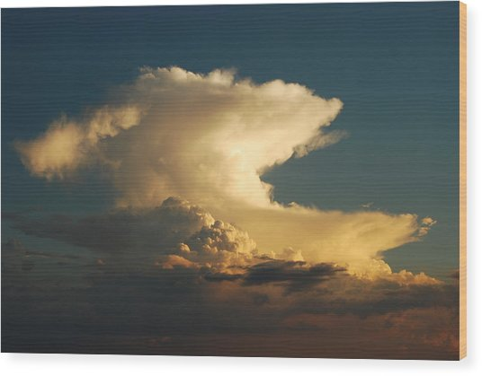 Hammerhead Cloud Wood Print