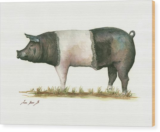Hampshire Pig Wood Print