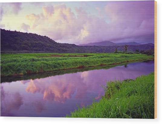 Hanalei Dawn Wood Print by Kevin Smith