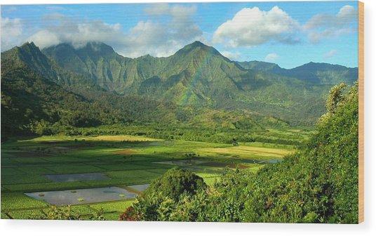 Hanalei Valley Rainbow Wood Print by Stephen Vecchiotti