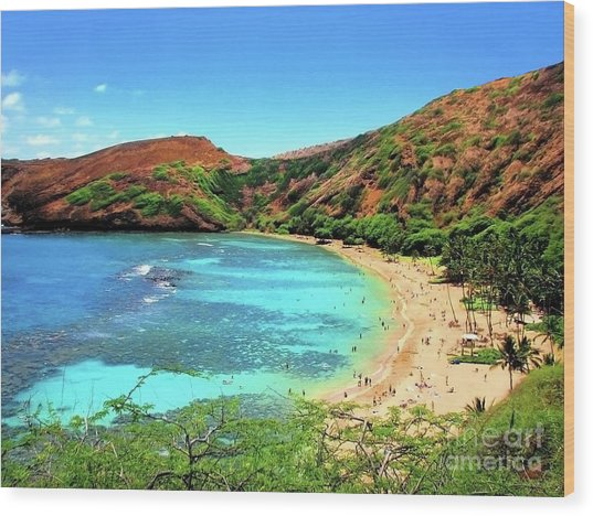 Hanauma Bay Nature Preserve Wood Print