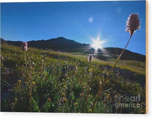 Wood Print featuring the photograph Handies Peak Sunrise by Kate Avery