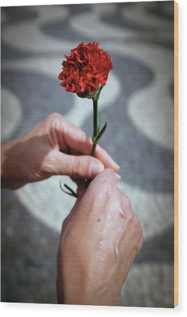 Hands And Carnation Wood Print