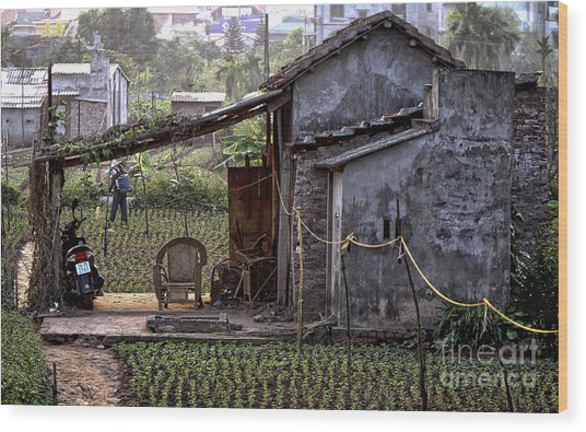 Hanoi Living Wood Print