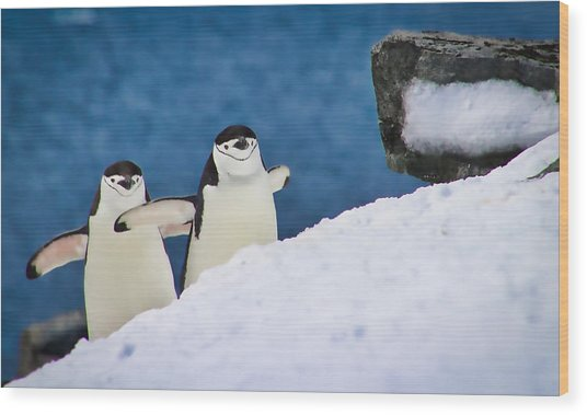 Happy Feet Wood Print