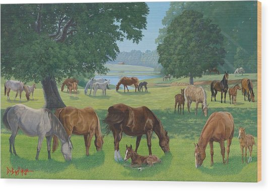Happy Hollow Mares Wood Print