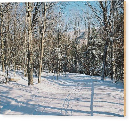 Happy Trails Wood Print
