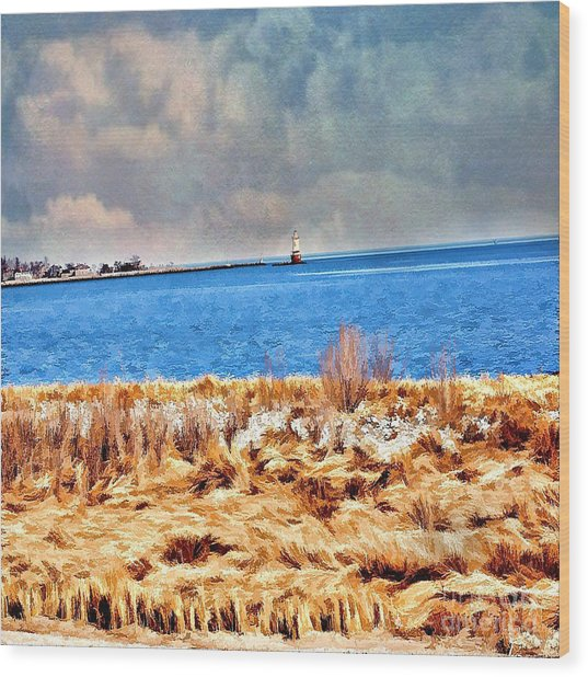 Harbor Of Tranquility Wood Print