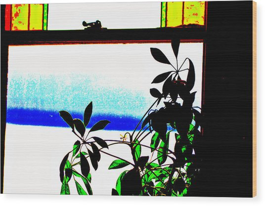 Harbor Side Window Wood Print