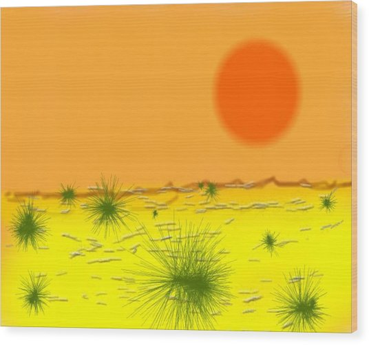 Hard Sun Of Desert Wood Print