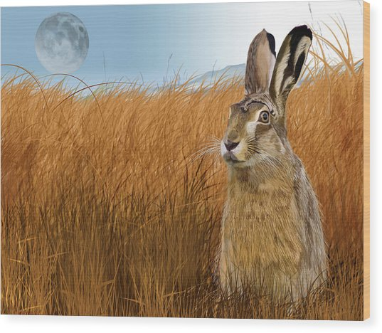 Hare In Grasslands Wood Print
