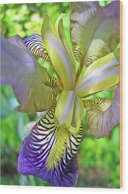 Harmony 4 Wood Print