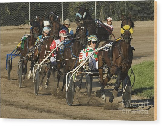 Harness Racing 9 Wood Print
