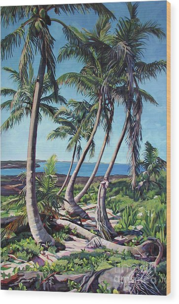 Harpster Island Wood Print